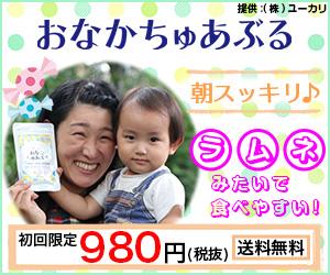 初心者に贈る子供の便秘を解決する栄養補助食品「おなかちゅあぶる」の急所!
