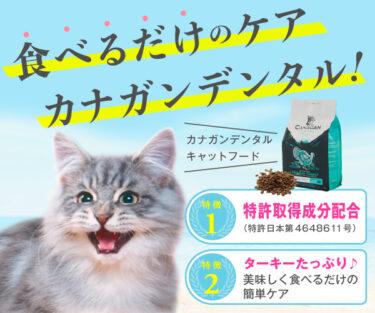 珠玉の【カナガンデンタルキャットフード】特許取得成分の力