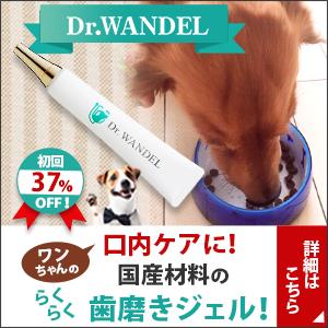 愛犬の口腔ケアジェル【ドクターワンデル】の話が、どんどん大きくなっていく。