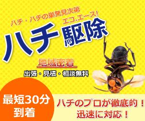 魔法の即日対応OK【エコ.エース ハチ駆除】