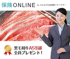 【保険ONLINE】自宅でプロに相談できる!無料のオンライン保険相談に贈る