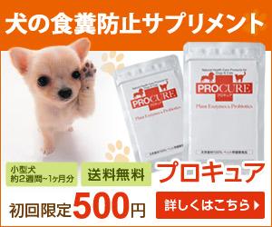 史上初の酵素とプロバイオティクスのペット(犬・猫)用サプリメント【プロキュア】