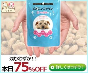 小型犬用スキンケアサプリ【ビオワンファイン】塾